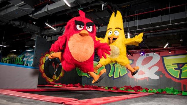 卡塔尔:愤怒的小鸟主题乐园开业 联动电影