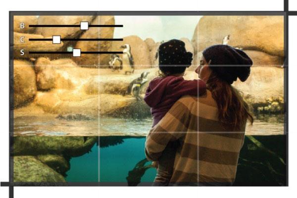 旅游活动内容平台Magpie:提升供应分销效率