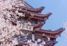 日媒:日本停发外国人签证政策延长1个月