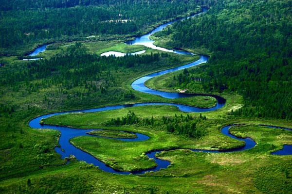 国家林草局:2020我国将正式设立一批国家公园