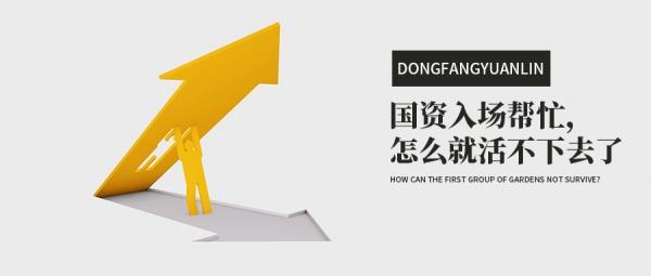 dongfangyuanlin190618