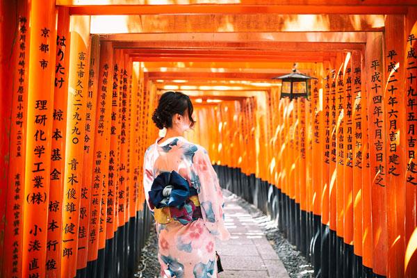 """""""多刷""""盛行:日本深度游產品在飛豬花樣翻新"""