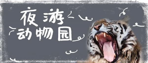 dongwuyuan190812a