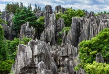 云南:正式恢复跨省团队游 提倡小规模旅游团队