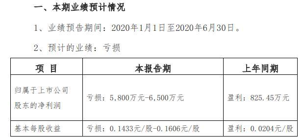 张家界:预计2020上半年亏损5800至6500万元