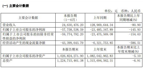 长白山:上半年营收约2463万元 亏损约5776万元