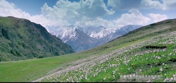 xinjiang201003b