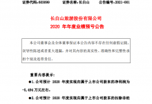 长白山:预计2020年亏损约5494万元