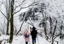 全国冰雪旅游宣传推广活动系列16:冰雪旅游在线化开发未来更多的可能性