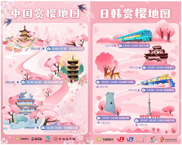 """飞猪""""云赏樱"""":全球九大樱花景区接力直播"""