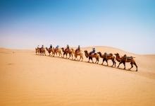 飞猪掀起后浪:在大西北沙漠里搞一场奇妙旅行节