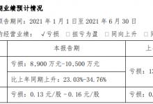 岭南控股:上半年预计亏损8900万至1.05亿元