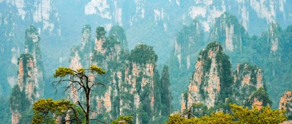 zhangjiajie210804e
