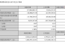 張家界:上半年營收1.17億元 同比增長226.68%